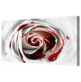 Blood Rose Macro Giclee Framed Canvas Print