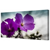 "Purple Rain Framed Canvas Wall Art Picture 14"" x 24"""