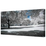 "Snowy Winter Trees Framed Canvas Wall Art Picture 18"" x 40"""
