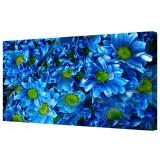 Blue Chrysanthemum Flowers Canvas Print Wall Art