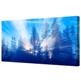 Blue Forest Sun Rays Canvas Wall Art Picture