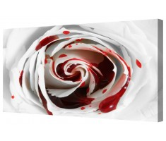 Blood Rose Macro Framed Canvas Wall Art Picture