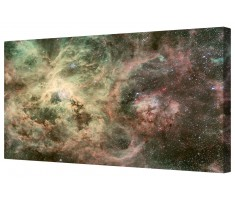 Tarantula Nebula Framed Canvas Wall Art Picture