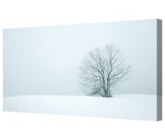 Solitary Winter Snow Tree Framed Canvas Wall Art Picture