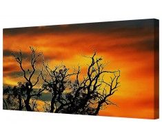Orange Flame Sunset Silhouette Framed Canvas Wall Art Picture