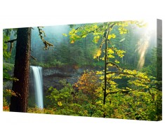 Sunlit Forest Waterfall Framed Canvas Wall Art Picture