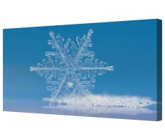 Ice Blue Single Snowflake Framed Canvas Wall Art Picture