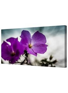 Purple Rain Flowers Framed Canvas Wall Art Picture