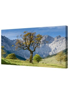 The Lonely Tree Framed Canvas Wall Art Picture