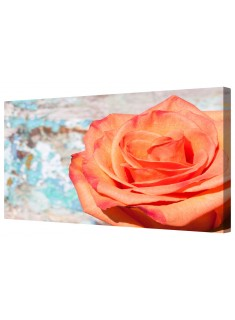 Red And Orange Rose Framed Canvas Wall Art Picture