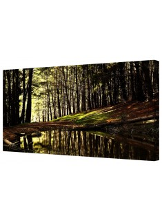Forest Reflections Framed Canvas Wall Art Picture