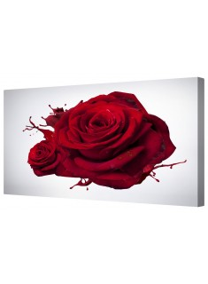 Two Crimson Red Roses Framed Canvas Wall Art Picture