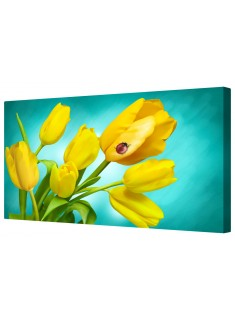 Yellow Tulip Flower Display Framed Canvas Wall Art Picture