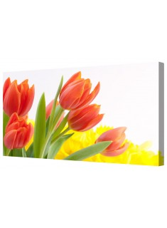 Red Tulip Flowers Framed Canvas Wall Art Picture