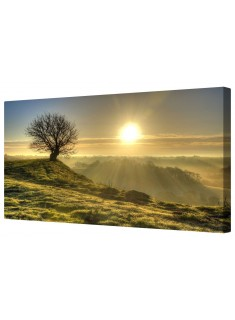 Lonely Tree at Sunset Framed Canvas Wall Art Picture