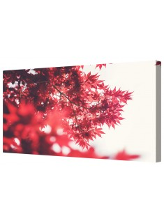 Autumn Red Maple Leaves Framed Canvas Wall Art Picture
