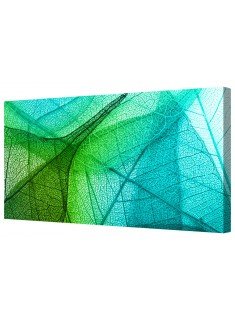 Ambient Transparent Leaves Framed Canvas Wall Art Picture