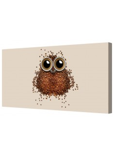 Coffee Time Brown Owl Framed Canvas Wall Art Picture